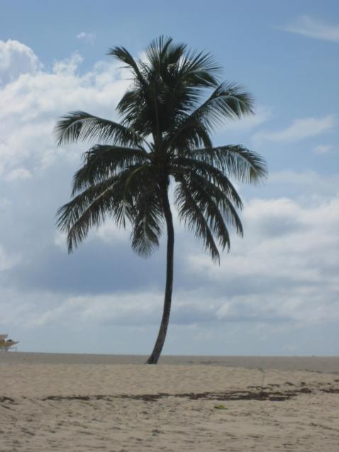 Michael Wagner Vero Beach Florida Beach Days